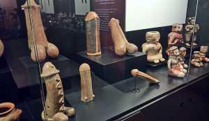 kostaryka muzeum naturalne san jose stolica