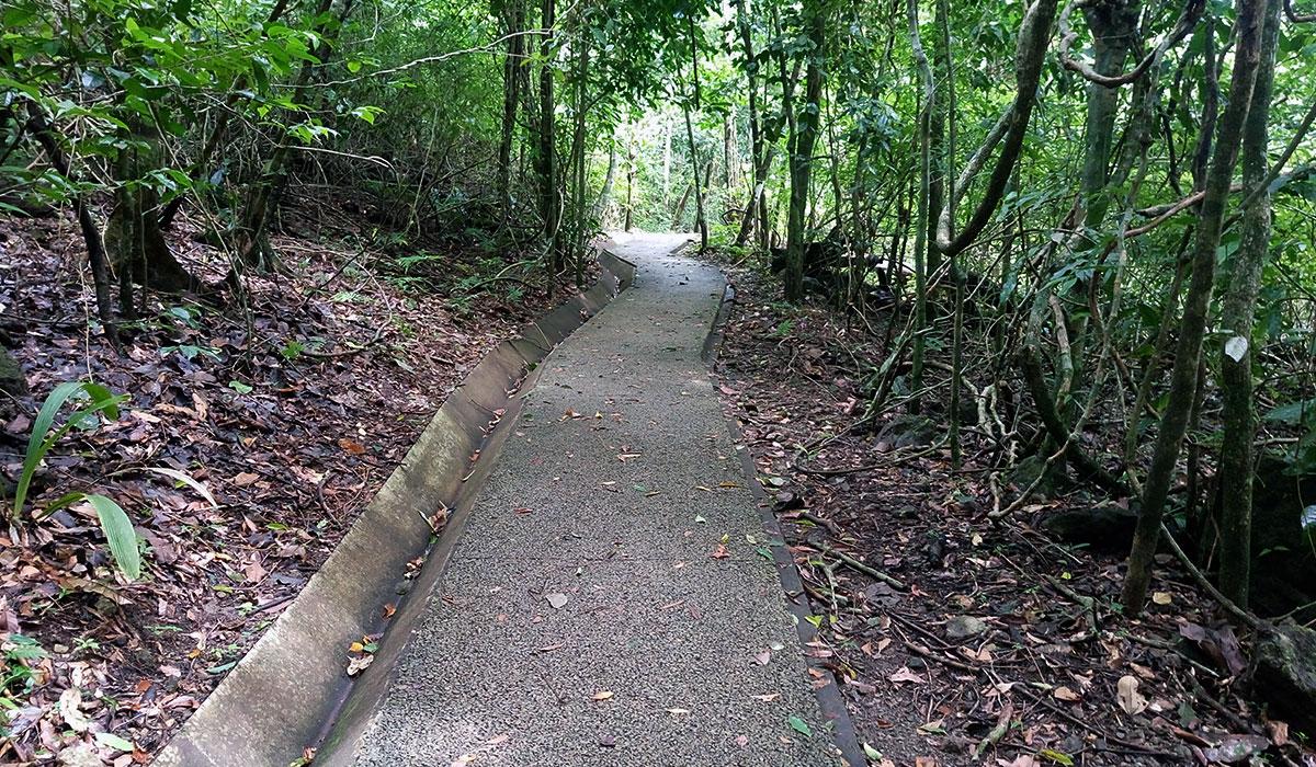 kostaryka szlaki w aprku narodowym antonio