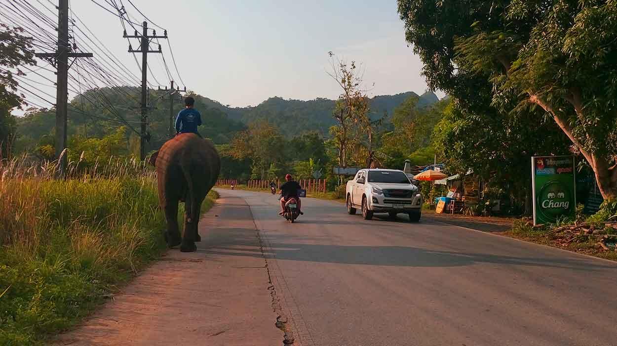 mieszkanie za granicą tajlandia azja vietnam porady