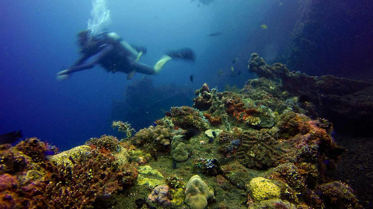 nurkowanie Bali tulamben padi