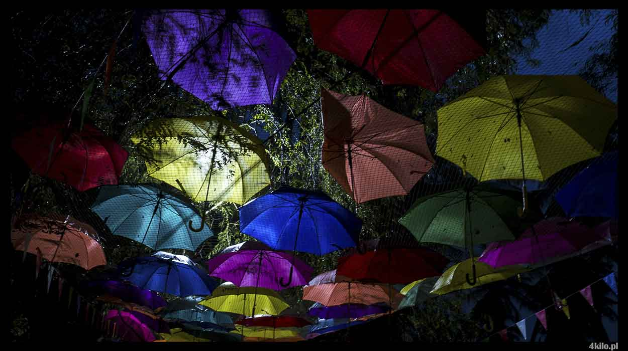koh tao festival 2018 deszcz