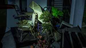 prostytucja w tajlandii burdel