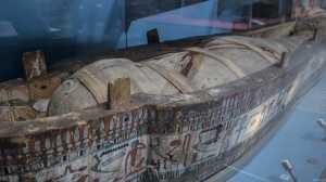 londyn muzeum historii naturalnej